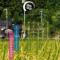 全22施設!能登半島の安宿・民宿・ゲストハウスを徹底的に調べてみた!金沢から足をのばして能登の大自然に触れてみてはいかがでしょうか?!